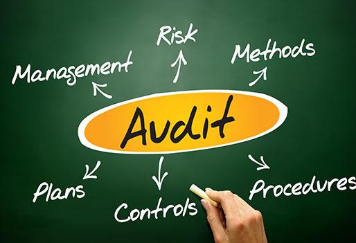 Audit Representation